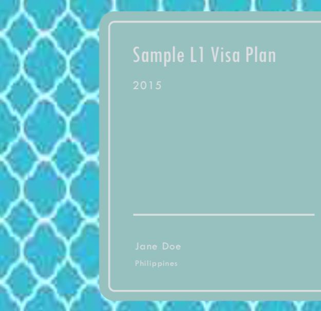 L-1 Visa - Clothes Company